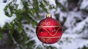 Bola roja de la Navidad en la rama nevada del abeto almacen de metraje de vídeo