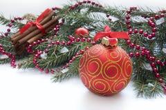 Bola roja de la Navidad, ramita del abeto, cinta con el dibujo del árbol Imagenes de archivo