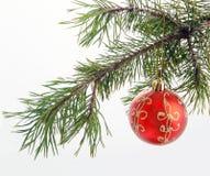Bola roja de la Navidad y del Año Nuevo en el árbol de abeto Fotografía de archivo libre de regalías
