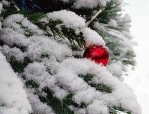Bola roja del espejo sacada el polvo con nieve Foto de archivo libre de regalías