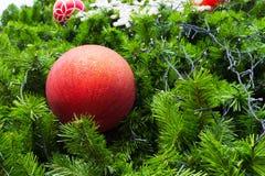 Bola roja en el árbol de navidad Imagen de archivo libre de regalías
