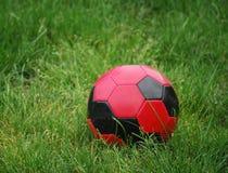 Bola roja en hierba Fotos de archivo
