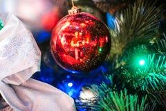 Bola roja en las ramas del árbol de navidad con las luces Imágenes de archivo libres de regalías