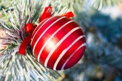 Bola roja grande de las decoraciones de la Navidad en el árbol de Navidad al aire libre Imagenes de archivo