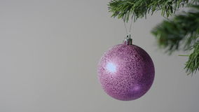 Bola roxa grande do Natal no ramo de árvore do Natal vídeos de arquivo
