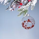 Bola transparente de la Navidad en un fondo gris Año Nuevo Fotos de archivo libres de regalías