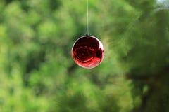 Bola vermelha bonita do Natal Fotografia de Stock Royalty Free