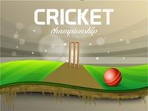 Bola vermelha com coto do wicket para o campeonato do grilo Foto de Stock Royalty Free
