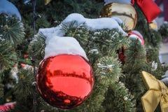 A bola vermelha de ano novo na árvore na neve fotos de stock