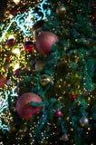 A bola vermelha do brilho comemora o Natal na árvore com fundo da vinheta da luz branca do fio Fotos de Stock Royalty Free
