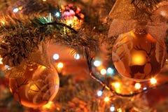 Bola vermelha do Natal em uma árvore de Natal Fotos de Stock Royalty Free
