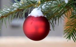Bola vermelha do Natal na árvore em exterior, neve na árvore de Natal Imagem de Stock Royalty Free