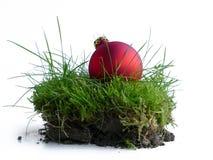 Bola vermelha do Natal na grama, uma parte de natureza foto de stock royalty free