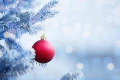 Bola vermelha do Natal que pendura em um ramo de árvore da neve Imagens de Stock Royalty Free