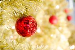 Bola vermelha do Natal que pendura na árvore de Natal Foto de Stock Royalty Free