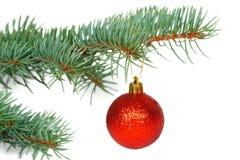 Bola vermelha na árvore de Natal Foto de Stock