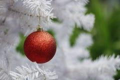 Bola vermelha na árvore do White Christmas Imagens de Stock Royalty Free
