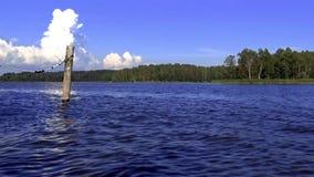 Bolardo de madera en el mar Báltico azul profundo con el bosque verde y cielo azul-blanco en el fondo almacen de video
