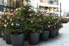 Bolas coloridos das árvores de Natal Fotografia de Stock