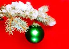 Bolas con las ramas nevadas del abeto. Foto de archivo libre de regalías