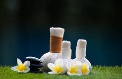 Bolas da compressa da massagem dos termas, bola erval e termas do tratamento Fotografia de Stock Royalty Free