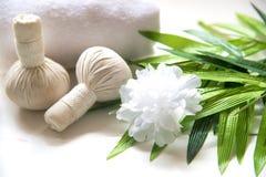 Bolas da compressa da massagem dos termas, bola erval e termas do tratamento, Fotografia de Stock Royalty Free