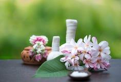 Bolas da compressa da massagem dos termas, bola erval e termas do tratamento, natureza verde do fundo, Foto de Stock