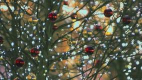Bolas 2018 da decoração do ano novo em festões das árvores vídeos de arquivo
