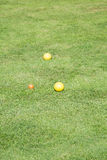 Bolas de Bocce amarelas em um gramado verde foto de stock royalty free
