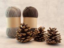 Bolas de cones de lãs e de pinho outono, queda, conceito do inverno fotos de stock