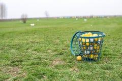 Bolas de golfe em uma cesta Imagens de Stock