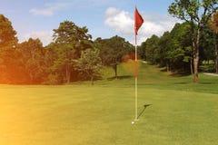Bolas de golfe no campo de golfe Foto de Stock Royalty Free