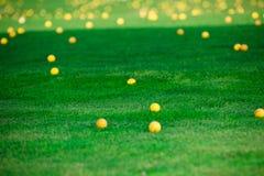 Bolas de golfe no campo de golfe Fotos de Stock Royalty Free