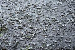 Bolas de hielo después de la granizada en la tierra Imagen de archivo