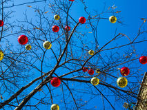 Bolas de la Navidad en el árbol contra el cielo 2 Imagenes de archivo