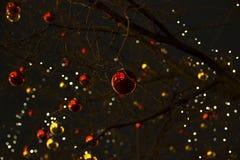 Bolas de la Navidad en un árbol contra la perspectiva de la noche SK Imágenes de archivo libres de regalías