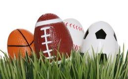 Bolas de los deportes en la hierba fotos de archivo