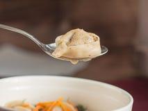 Bolas de masa hervida, raviolis con la carne Fotografía de archivo libre de regalías