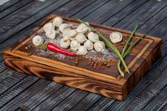 Bolas de masa hervida reales, deliciosas, rusas en la tabla, con las hierbas y las especias frescas fotografía de archivo libre de regalías