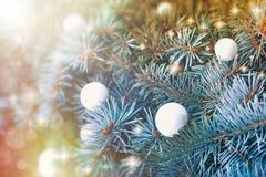 Bolas de nieve en el árbol de navidad al aire libre Fotografía de archivo libre de regalías