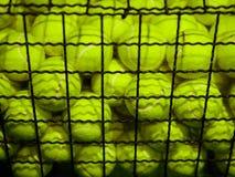 Bolas de tênis na cesta Conceito do material desportivo imagem de stock