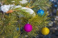 Bolas del Año Nuevo en un árbol de abeto Foto de archivo libre de regalías