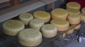 Bolas del queso en sitio de envejecimiento metrajes