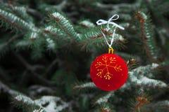 Bolas do Natal no ramo Imagem de Stock