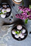 Bolas dulces de la semilla del chia con pur? del ar?ndano y de la zarzamora fotos de archivo libres de regalías