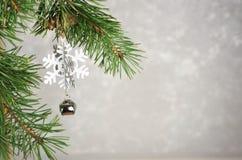 Bolas naturales verdes del árbol de navidad y de la Navidad con nieve en a imágenes de archivo libres de regalías