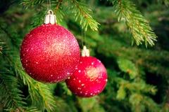 Bolas rojas en la picea, pieza del árbol de navidad con las decoraciones de la Navidad fotos de archivo