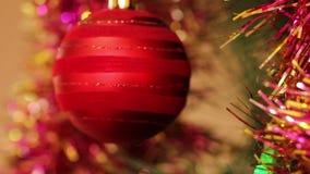 Bolas rojas en un árbol de navidad almacen de video
