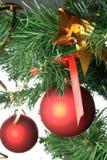 Bolas rojas que cuelgan del árbol de navidad Fotos de archivo libres de regalías