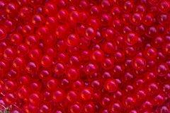 Bolas vermelhas do gel da água com bokeh Gel do polímero Gel de silicone Bolas do hydrogel vermelho Bola líquida de cristal com r fotos de stock